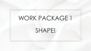 Work Package 1 - SHAPE!