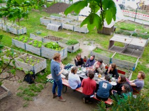 PEOPLE, PEAS AND PLACES: GARDENS FOR COMMUNITIES